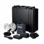 Elinchrom Ranger Quadra Hybrid/A-head (10400.1) комплект света на базе генератора