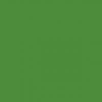 Fotokvant BP-0113SM Green mat/semi-mat фон пластиковый зеленый матовый/полуматовый 1х1.3 м