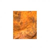 Grifon W-377 фон пятнистый цвета мокрого желтого песка с вкраплениями 2,7х5 м