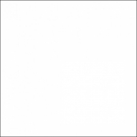 FST 100х120 W фон пластиковый белый матовый