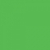 Colorama CO7100 Spring Green 1х1,3 пластиковый матовый фон светло-зеленый