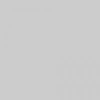 Falcon Eyes (22667) фон тканевый серый 240x400 см
