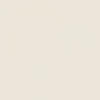 Superior 9010 DOVE GRAY фон пластиковый 1,0х1,3 м матовый цвет светло-серый