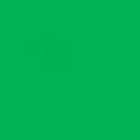 GreenBean Green фон тканевый хромакейный зеленый 300х700 см