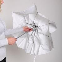 MingXing 2-folded Translucent Umbrella 36