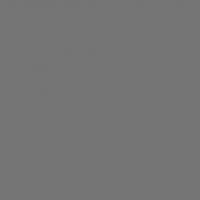 Chris James 210 ND6 фолиевый фильтр серый
