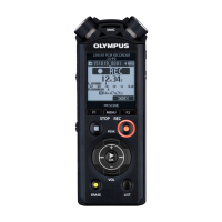 Olympus LS-P2 PCM линейный диктофон