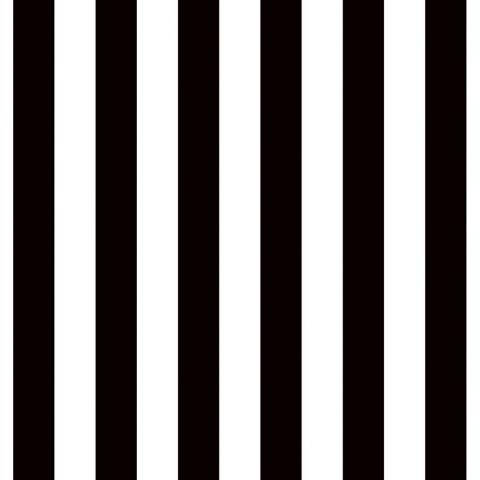 Ella Bella FADELESS STRIPE BLK/WHT (57625) фон бумажный полоски черно-белые 120х1500 см