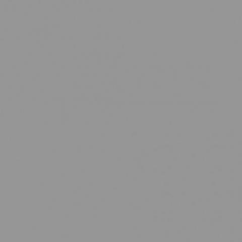 Chris James 209 ND3 фолиевый фильтр серый