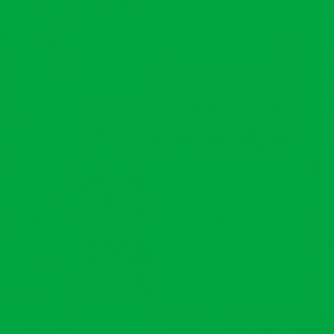 Fotokvant FTR-633 фотофон нетканый 2,8х6 м зеленый