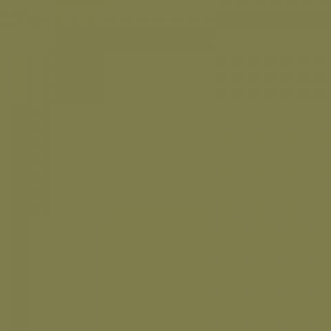 Colorama Leaf 197 фон бумажный 2,72х11 м цвет лист