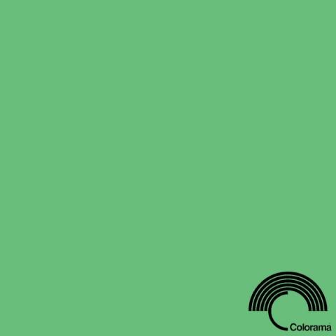 Colorama CO159 Summer Green фон бумажный 2,72х11 м цвет летний зеленый