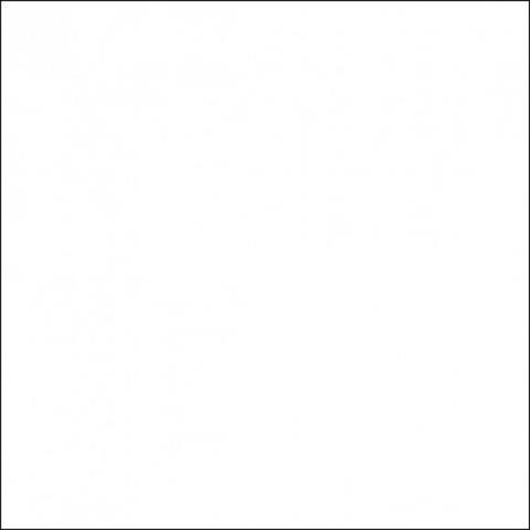 Falcon Eyes фон пластиковый белый матовый 100х140 см