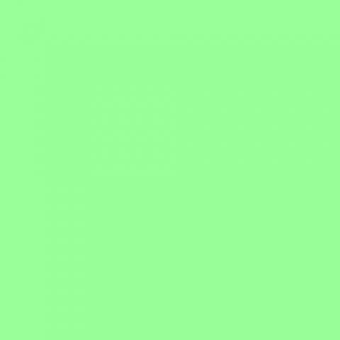 Fotokvant NVF-8878 нетканый фон 1,6х5,0 м салатовый