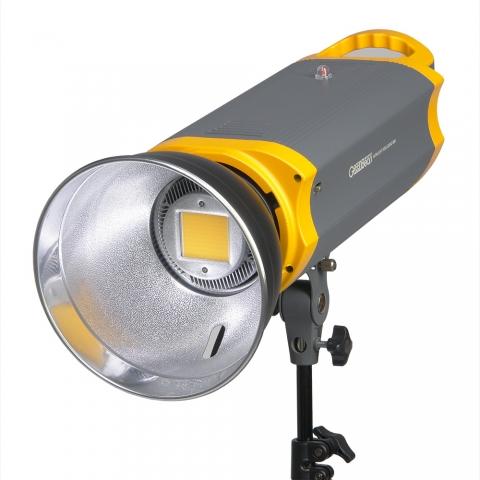 GreenBean SunLight 100 LEDX2 BW осветитель светодиодный